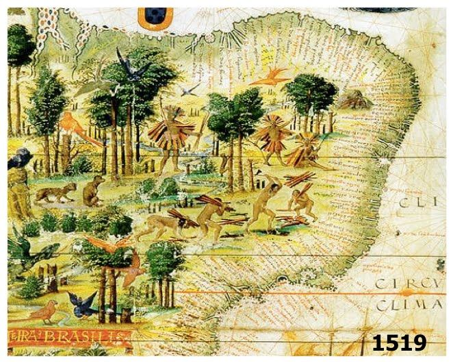 The forests of Brazil were plentiful with the brazil wood tree, used to make a dark red dye in order to color fabrics and textiles.